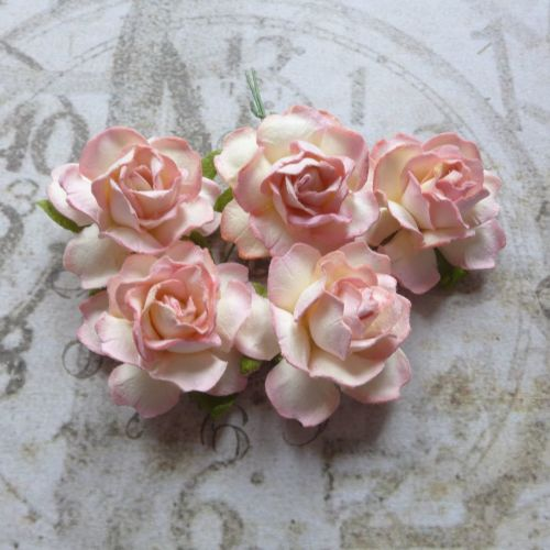 Puffy Mulberry Paper Roses ~ Coral Blend