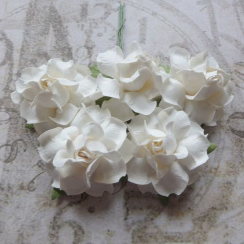 Closed Mulberry Roses ~ White (PF019)