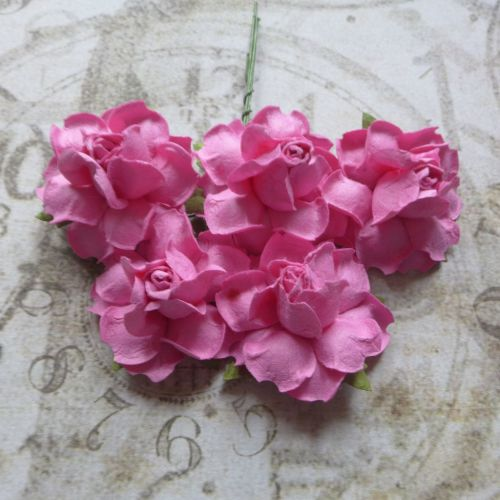 Closed Mulberry Roses ~ Pink (PF023)
