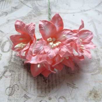 Mulberry Paper Lilies ~ Coral Blend (PF027)