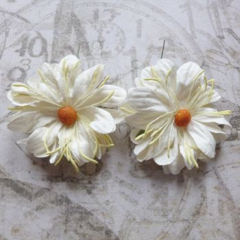 Large Fluffy Daisies ~ White (PF024)