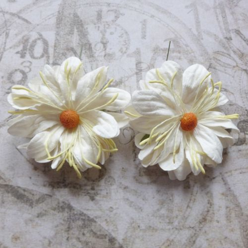 Large Fluffy Daisies ~ White (PF034)
