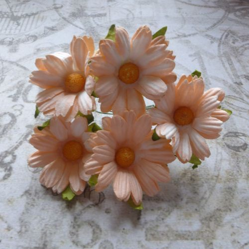 Mulberry Paper Daisies ~ Peach (PF035)