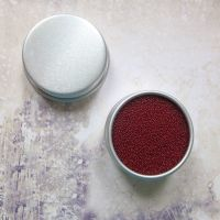 Petite Pots ~ Translucent Micro Beads Burnt Red 10