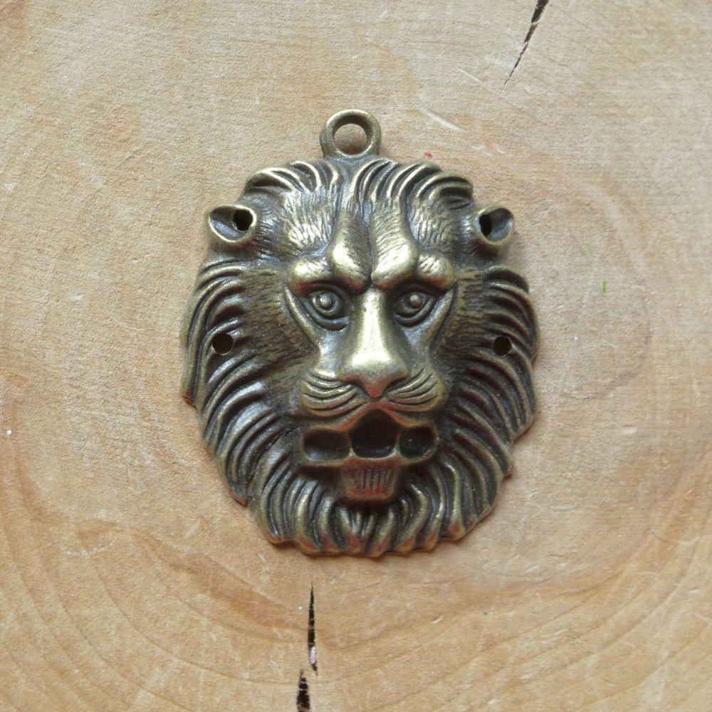 Lion's Mane (C145)