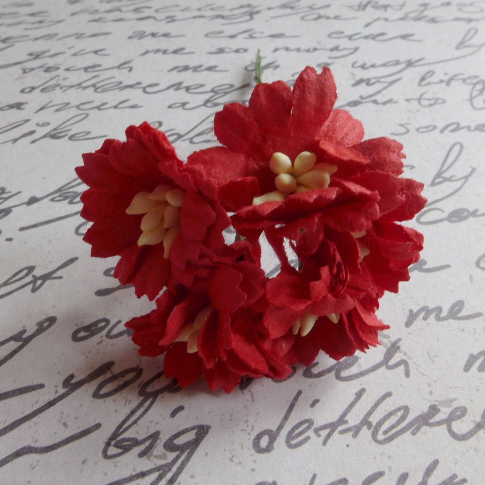 Tattered Daises ~ Red (PF043)