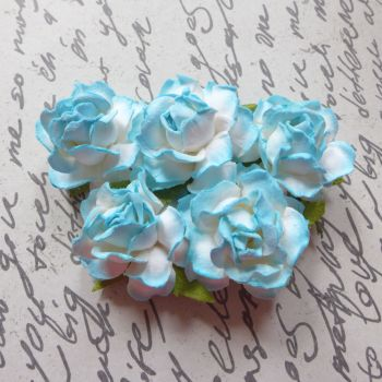 Closed Mulberry Roses ~ White/Aqua Blue (PF013)