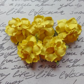 Closed Mulberry Roses ~ Yellow (PF045)