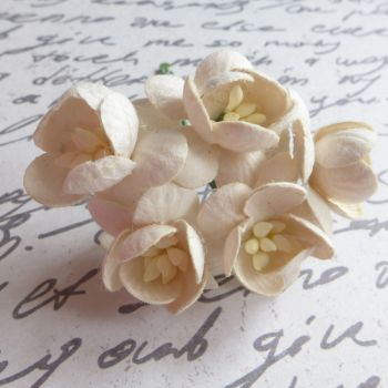 Cherry Blossom Mulberry Paper Flowers ~ Cream (PF025B)