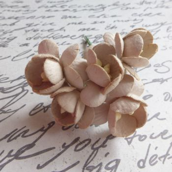 Cherry Blossom Mulberry Paper Flowers ~ Taupe (PF025C)