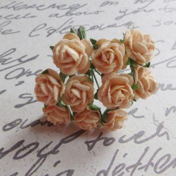 Tiny Rose Flowers ~ Pale Peach (PF003)