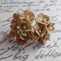 Mini Cherry Blossoms ~ Taupe (PF030C)