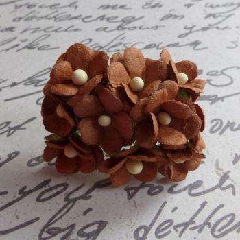 Mini Cherry Blossoms ~ Rust (PF030D)