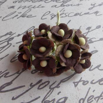 Mini Cherry Blossoms ~ Taupe & Chocolate Mix (PF030E)