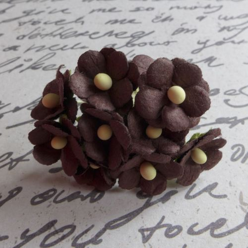 Mini Cherry Blossoms ~ Chocolate (PF062)