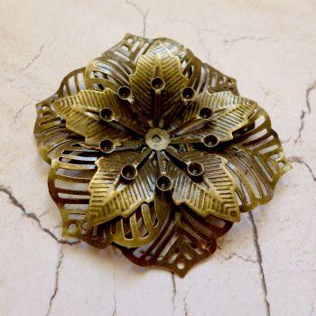 Bronze Poinsettia Flower