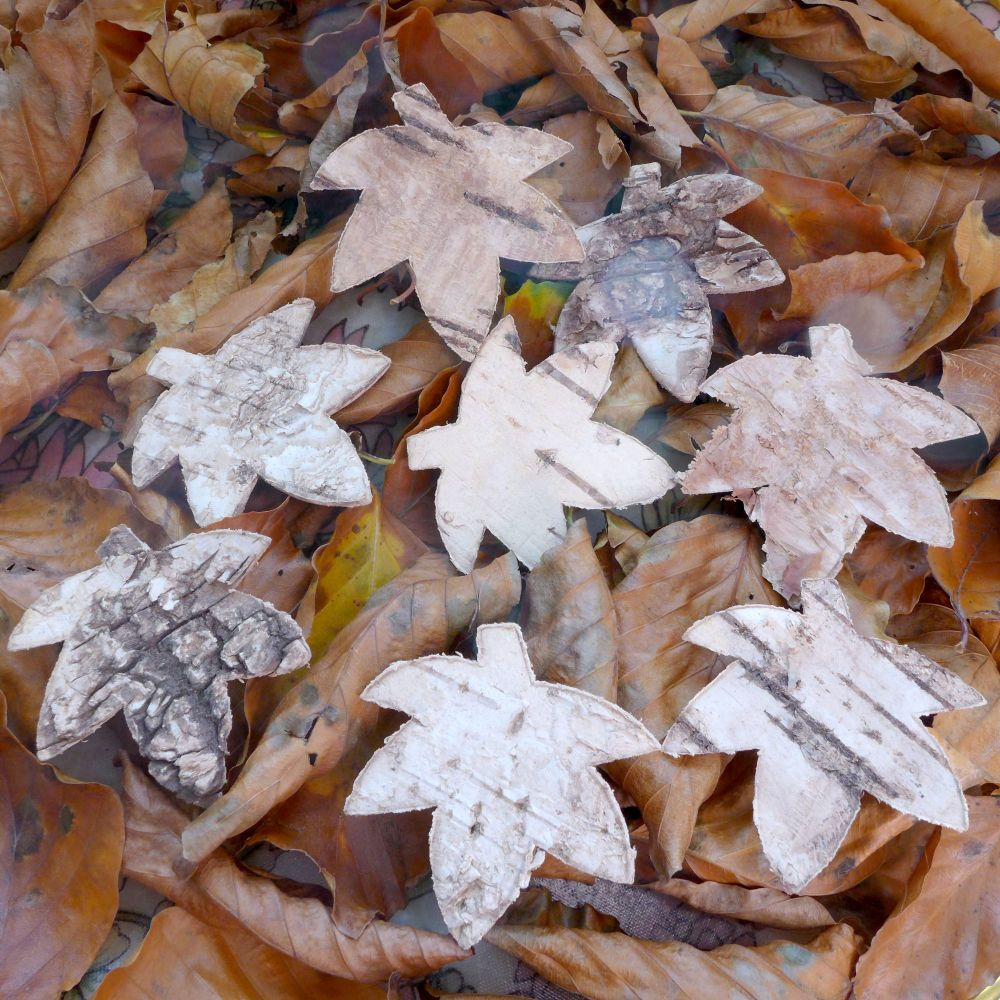 Maple Bark Leaves