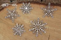 Flowers Of Winter - Snowflakes (5281)