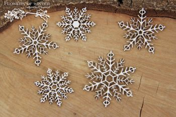 Flowers Of Winter - Snowflakes (5287)