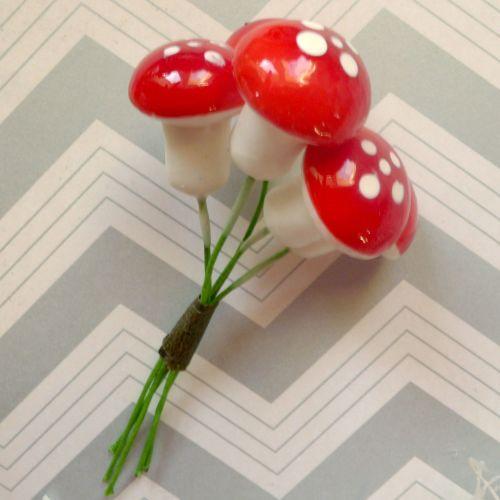 Mushroom Stems