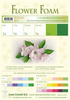 Leane Creatief Flower Foam A4 - Set 6 White-Green