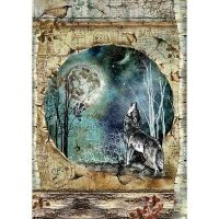 Stamperia Rice Paper A4 Cosmos Wolf & Moon (DFSA4388)