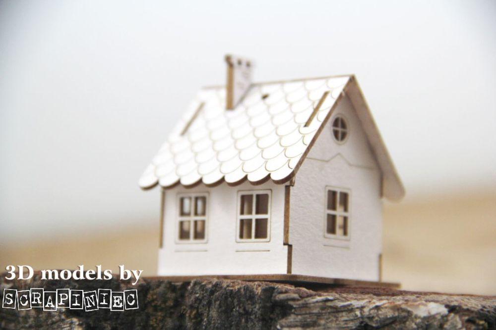 House - Micro Hut (5619)