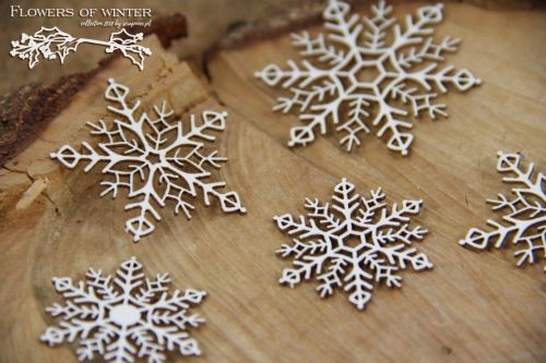 Flowers Of Winter - Snowflakes (5287)