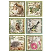 Stamperia Forest Rice Paper A4 Framed Animals (DFSA4425)