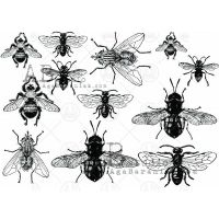 Chipboard Element Set ID-224 Insects