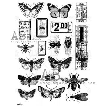Transparent foil 0019 - Assorted Insects