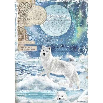 Stamperia Arctic Antarctic A4  Wolf Rice Paper (DFSA4480)