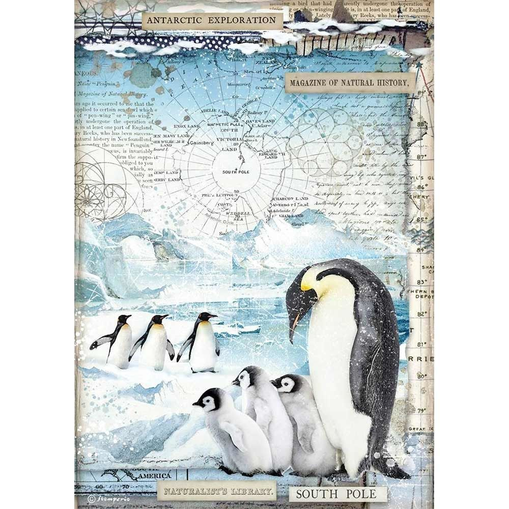 Stamperia Arctic Antarctic A4  Penguins Rice Paper (DFSA4479)