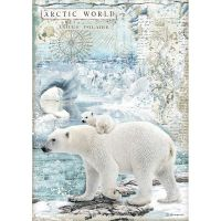 Stamperia Arctic Antarctic A4  Polar Bear Rice Paper (DFSA4478)