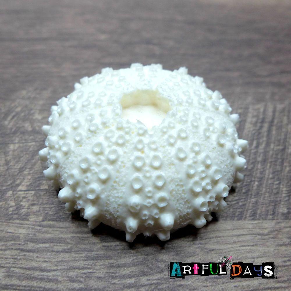 White Resin Sea Urchin (R7000)