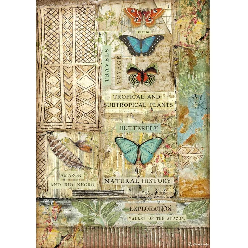 Stamperia Amazonia A4  Rice Paper Butterfly (DFSA4533)