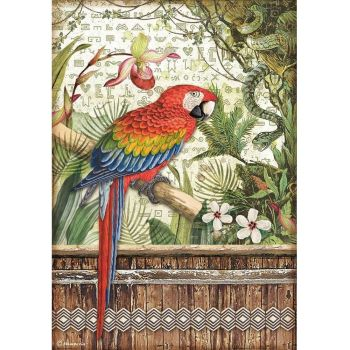 Stamperia Amazonia A4  Rice Paper Parrot (DFSA4531)