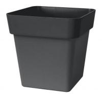 Mitu Quadro black