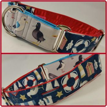 The 'Nauti-Gull' Two-Tone Martingale Collar