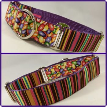 The 'Beans means Lines' Two-Tone Martingale Collar
