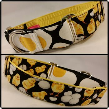 The 'Hatching Hank and Egg' Two-Tone Martingale Collar
