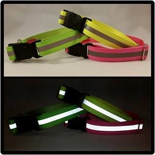 "1"" Hi Viz Reflective Clip Dog Collars"