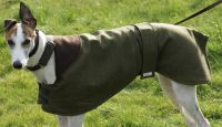 Italian Tweed Whippet and Greyhound Coats