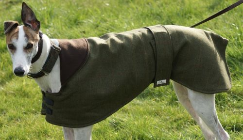 Italian Tweed Greyhound Coat