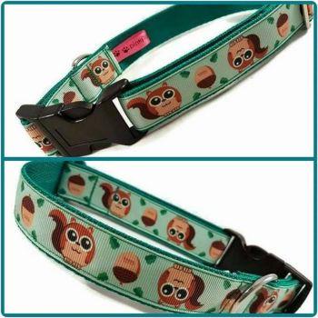 "1"" Squirrels Clip Dog Collar"