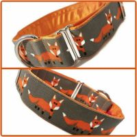 """1.5"""" Grey Cheeky Foxes House/Tag Collar"""