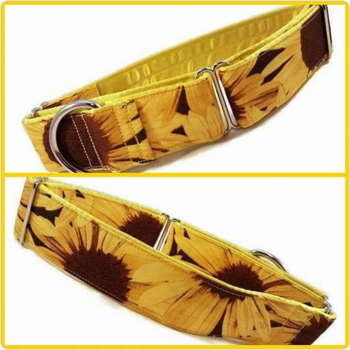 Sunflowers Martingale Collar