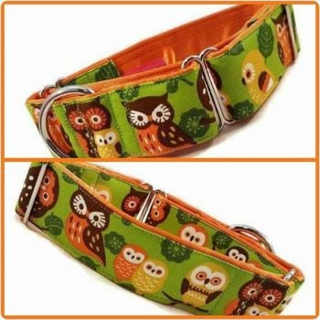 "1.5"" Green Owl Family Whippet Martingale Collar"
