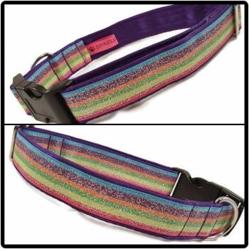 "1"" Rainbow Glitter Clip Dog Collar"