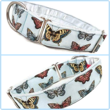 "1.5"" Blue Butterflies House/Tag Collar"
